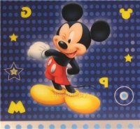 Mickey Mousepaqd